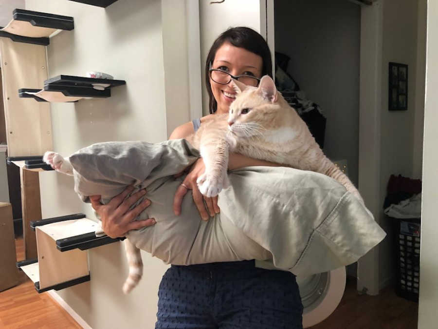 We Fell In Love With This 33 Pound Cat So We Decided To Adopt Him