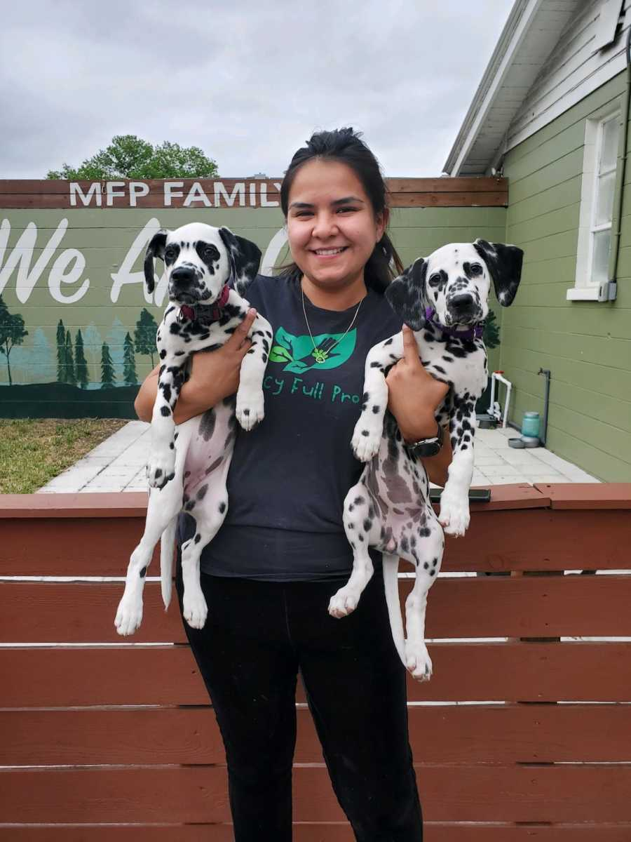 smiling girl holding two Dalmatian dogs
