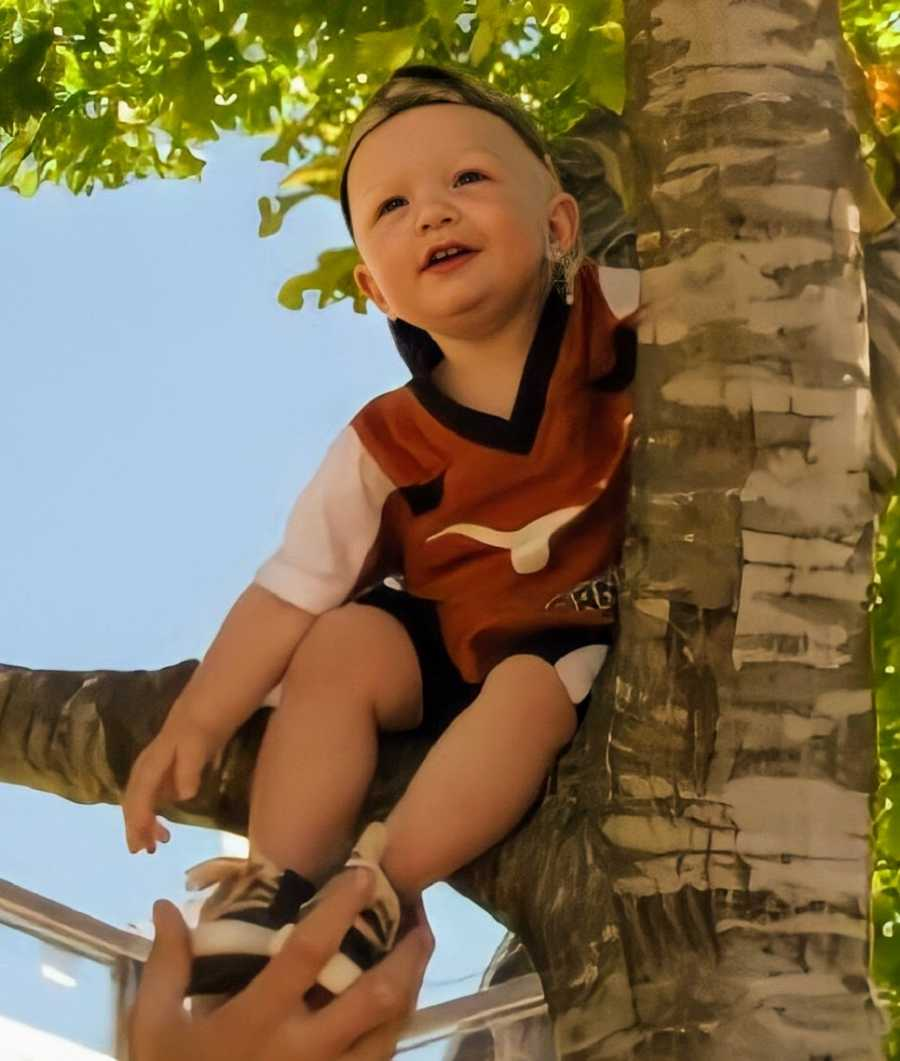 A toddler sits in a tree wearing a backwards cap