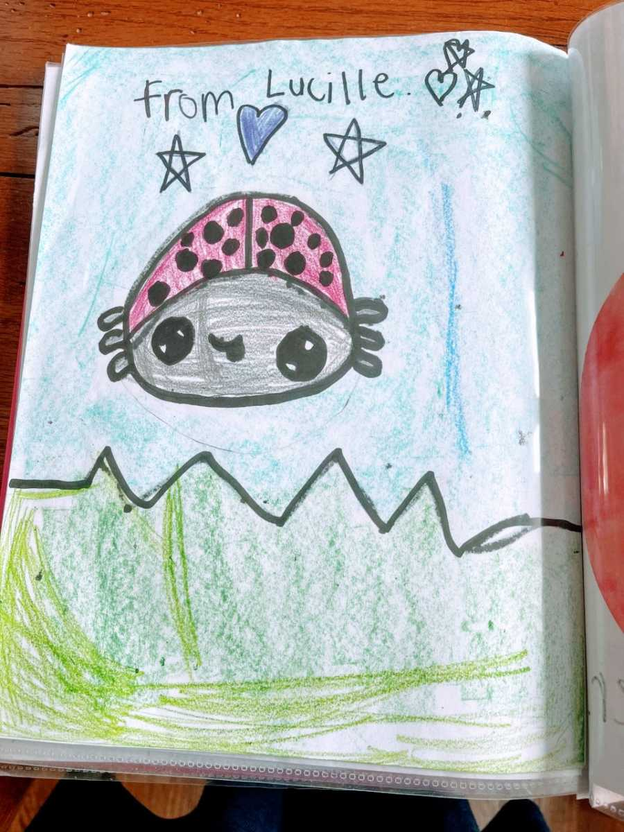 A drawing of a ladybug included in a folder of drawings given to a woman battling cancer