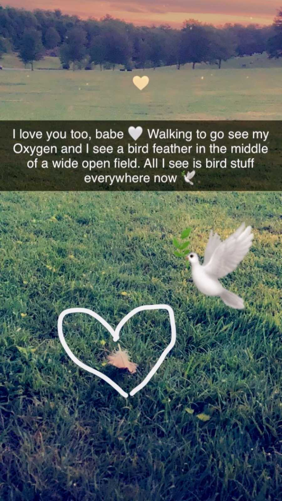 Woman snaps a photo of a bird feather, a wink from heaven from her late boyfriend