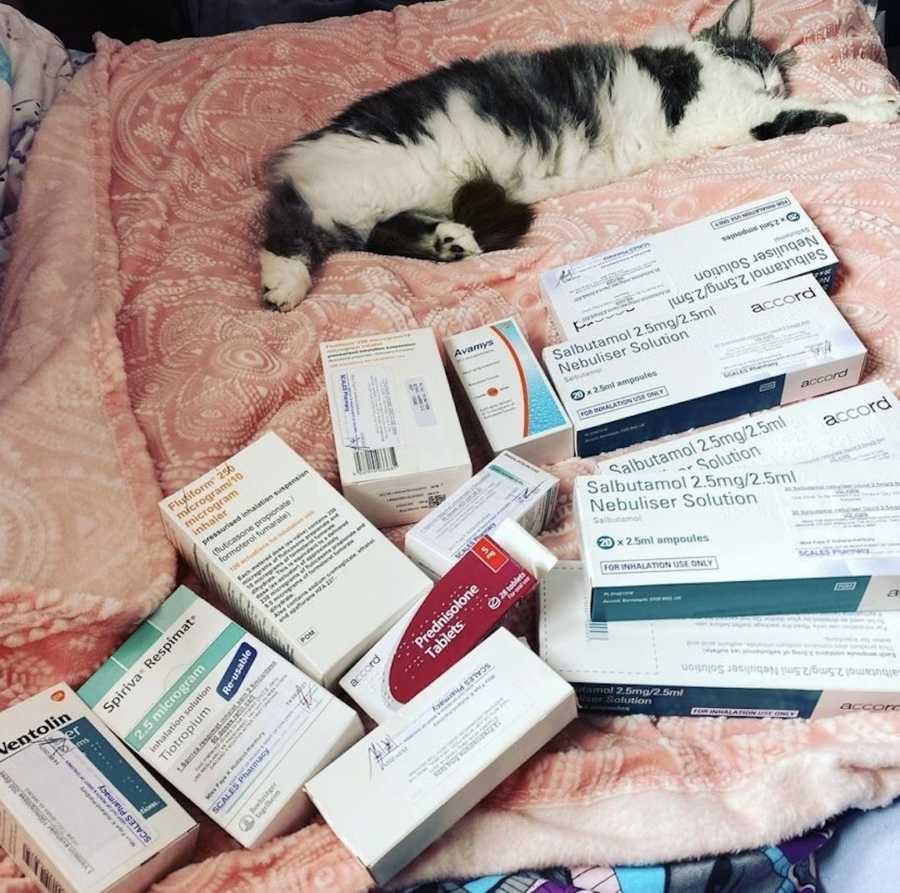 cat next to prescriptions