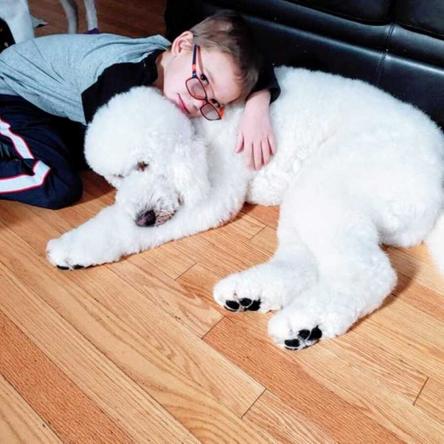 Little boy with epilepsy snuggles his seizure response dog, a white poodle named Freedom