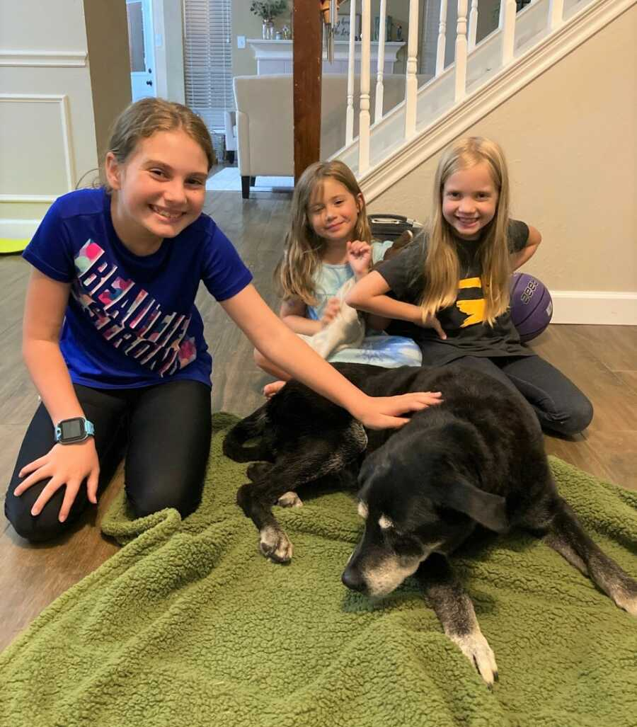 Elderly black lab mix, Zoey, lays on green blanket, surrounded by happy family members.