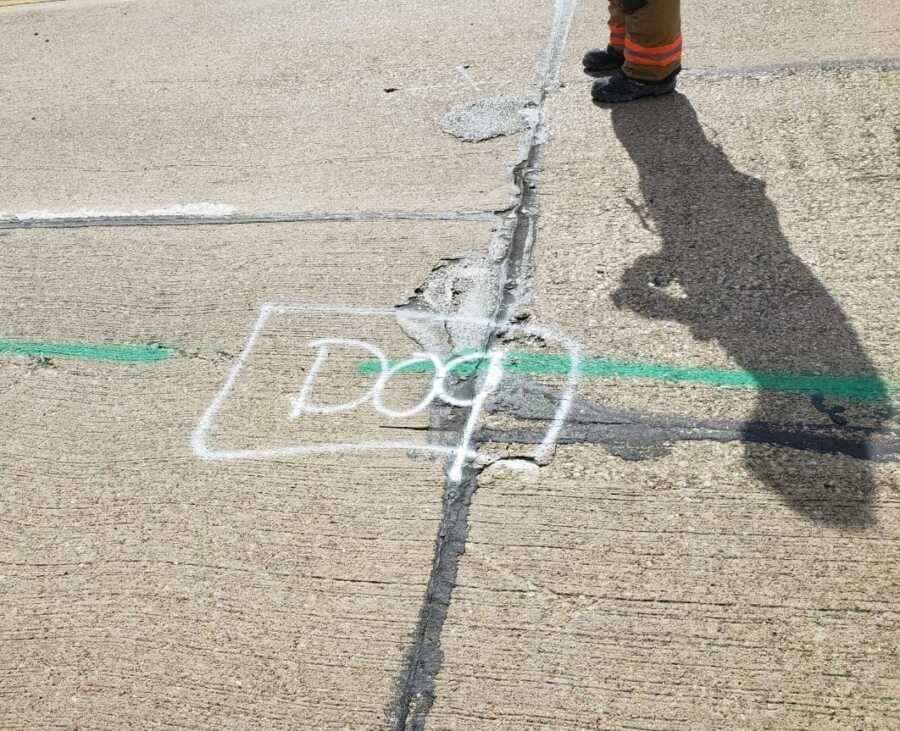 """Spray painted """"dog"""" on street marks the location of a lost dog stuck in the storm drain."""