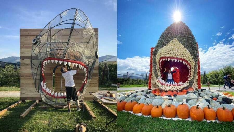 Shark frame and completed pumpkin shark creation.