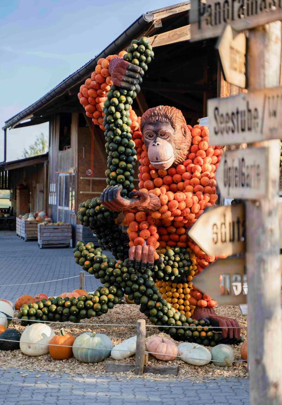 Giant monkey creation at Jucker Farm's pumpkin exhibition.