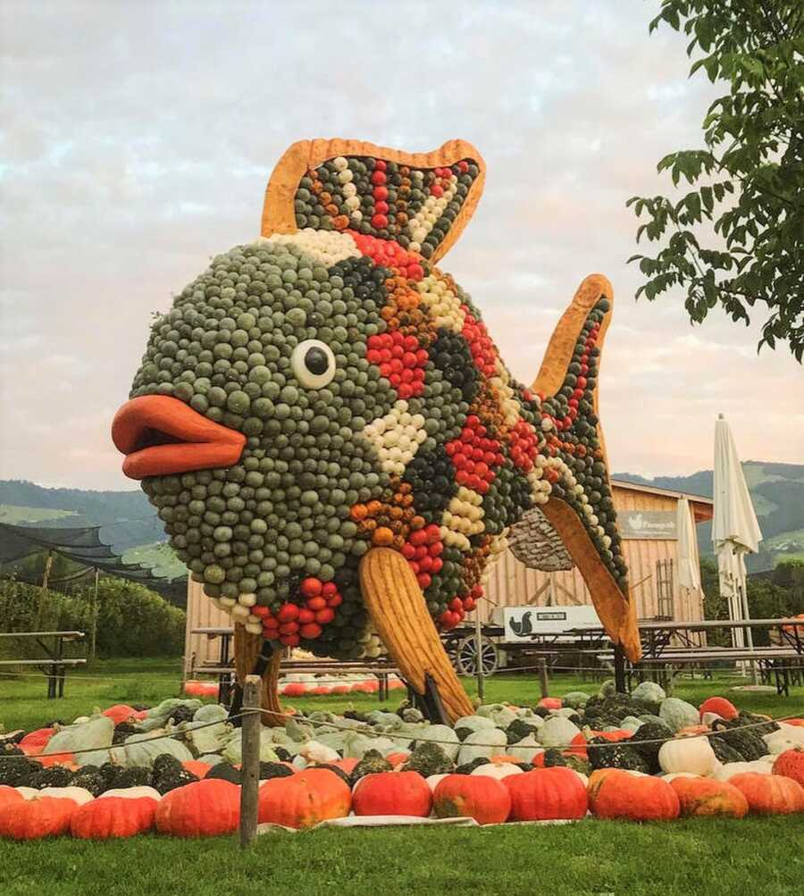 Giant fish creation at Jucker Farm's pumpkin exhibition.