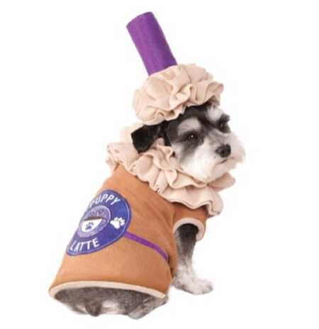Adorable puppy latte pet costume for Halloween.