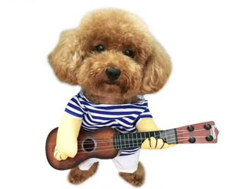 Funny guitar playing pet costume with plush arms for Halloween.