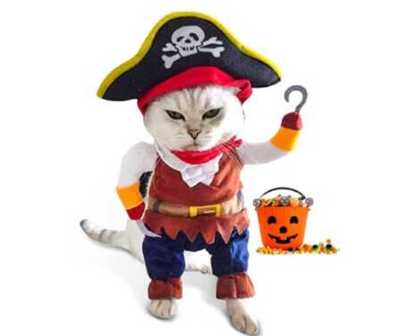 Funny pirate pet costume with plush arms for Halloween.