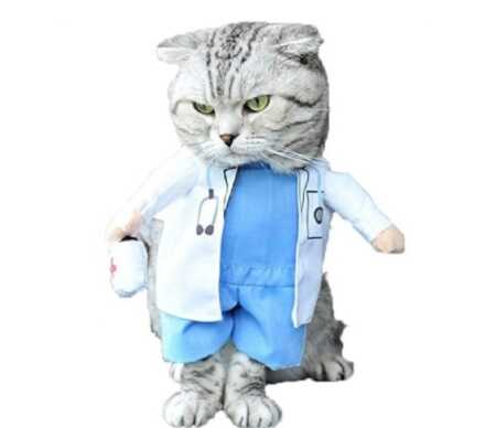Funny doctor pet costume with plush arms for Halloween.