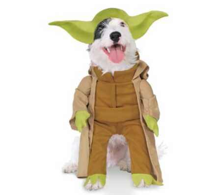 Star Wars Yoda pet costume with plush arms for Halloween.