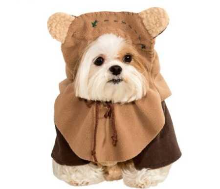 Star Wars Ewok pet costume for Halloween.