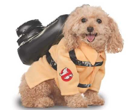 Ghostbusters jumpsuit pet costume for Halloween.